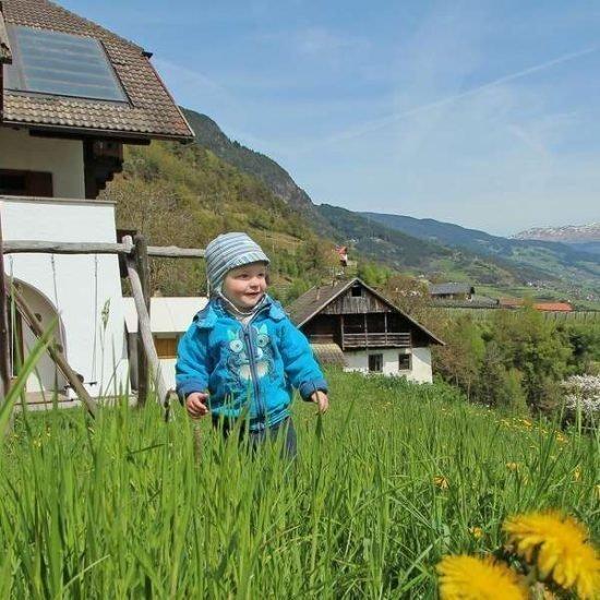 familienurlaub-auf-dem-bauernhof-suedtirol (3)