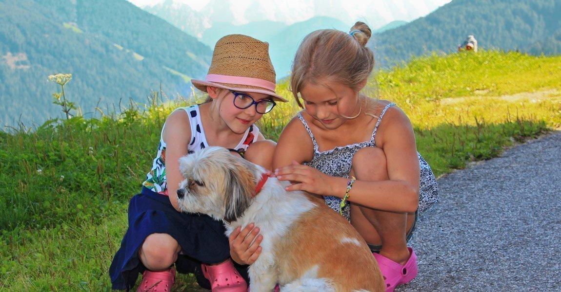 Esperienze istruttive tramite il contatto con gli animali al maso Pirchnerhof